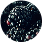 Blackberry, Blackberries, Brombeeren, blackbar – Der Frucht-Nuss-Super-Mix in Riegelform!