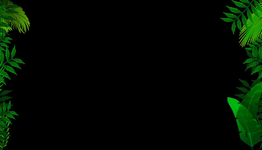 blackbar, Hintergrund Pflanzen, Dschungel